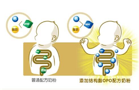结构脂opo即1,3-二油酸2-棕榈酸甘油三酯
